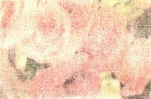 20140427-224559.jpg